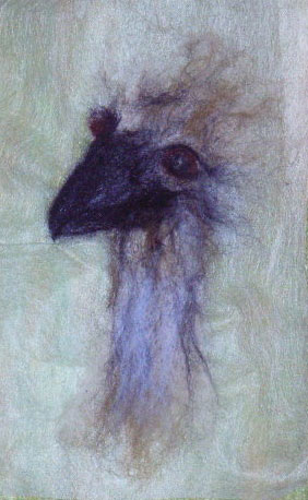 Emu_Head_On_Washaway